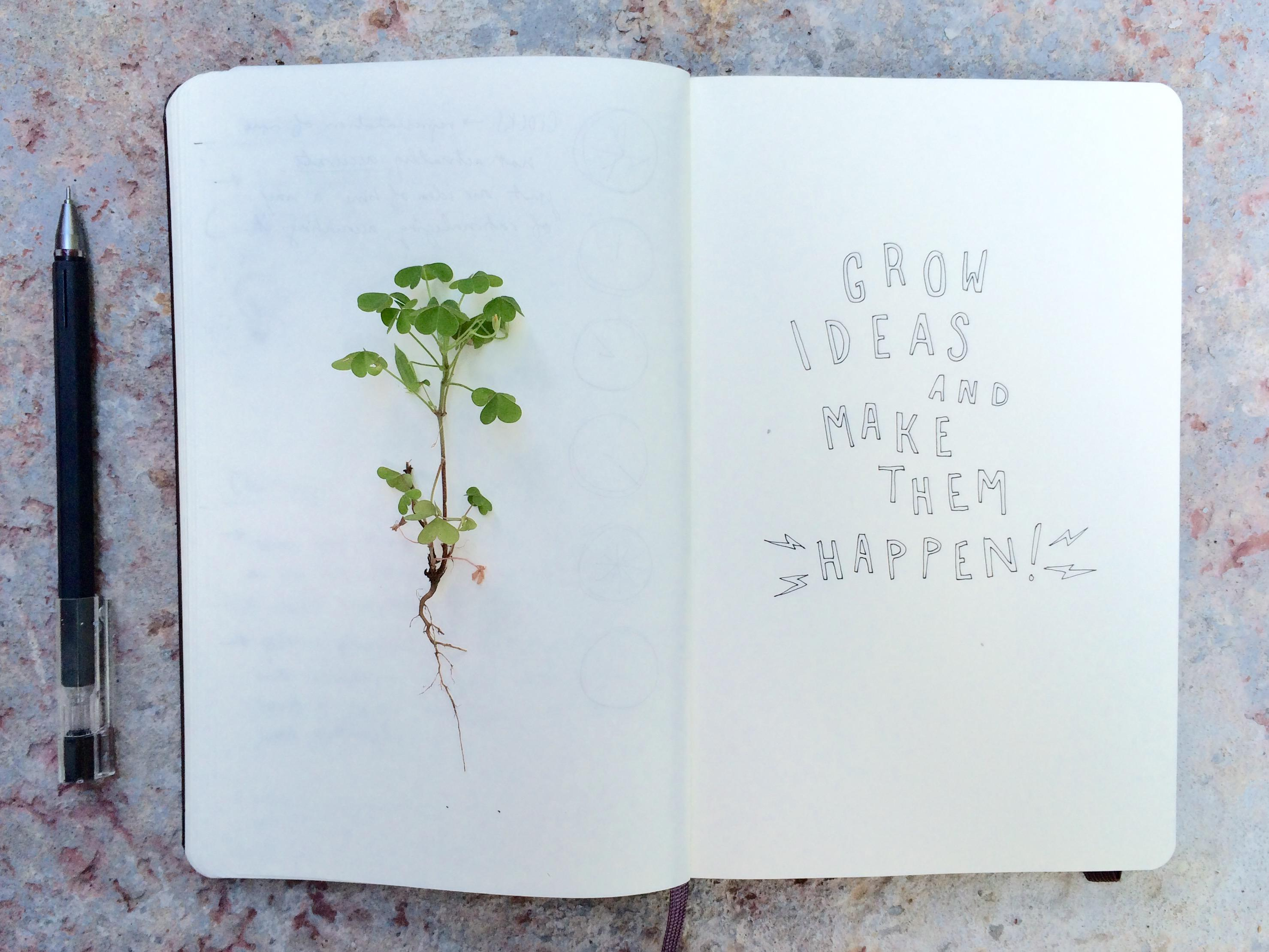 Grow Ideas + Make Them Happen - image 5 - student project