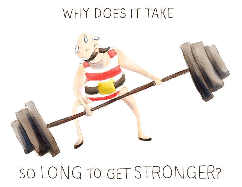 Why Does It Take So Long to Get Stronger? - image 2 - student project