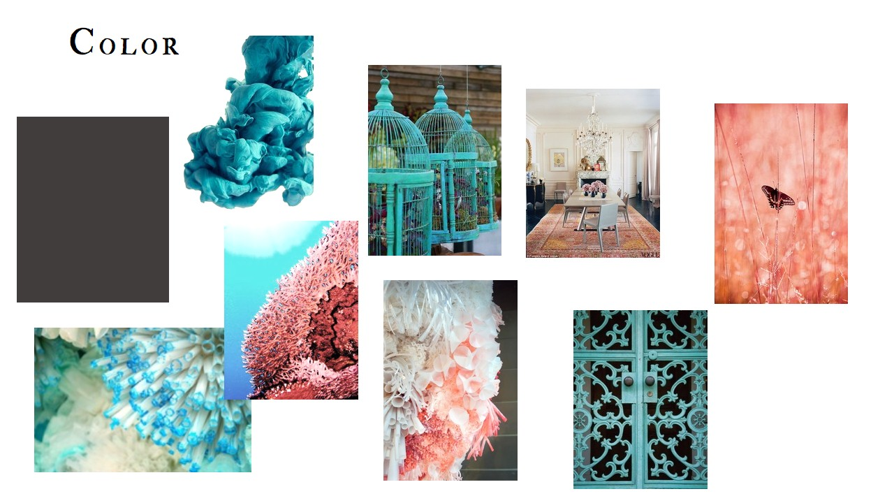 Anthropologie - image 2 - student project