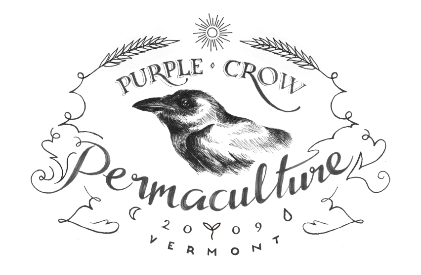 Purple Crow Permaculture - image 12 - student project