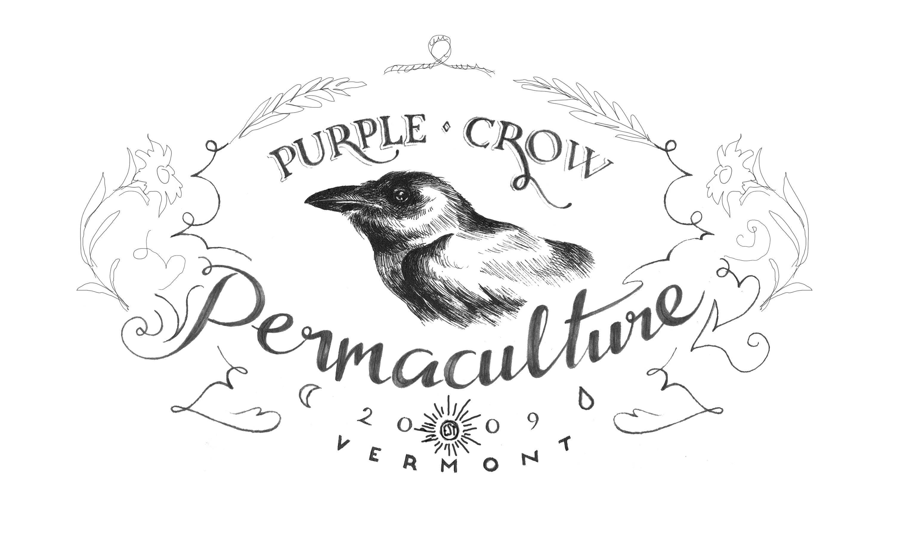 Purple Crow Permaculture - image 10 - student project