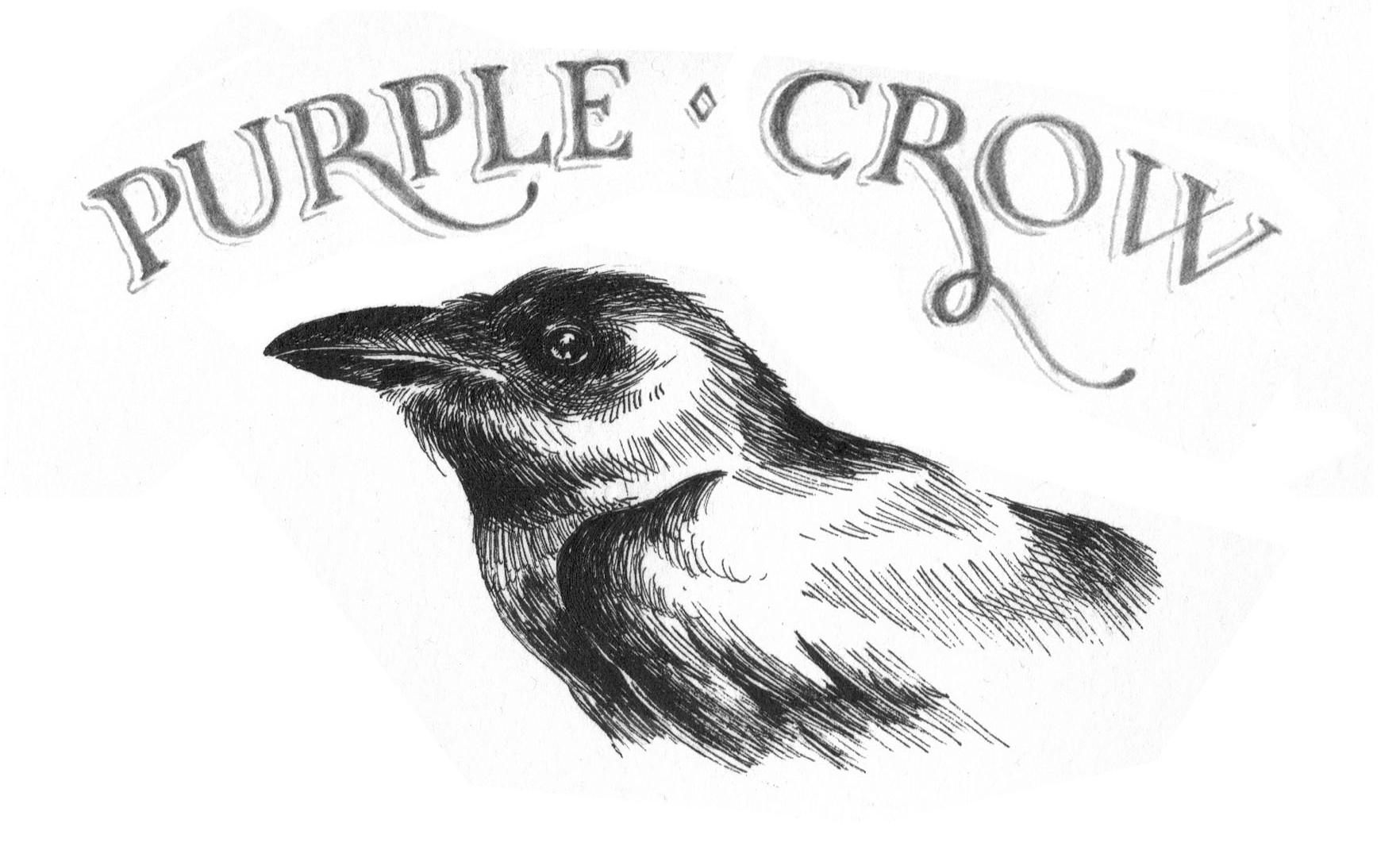Purple Crow Permaculture - image 5 - student project
