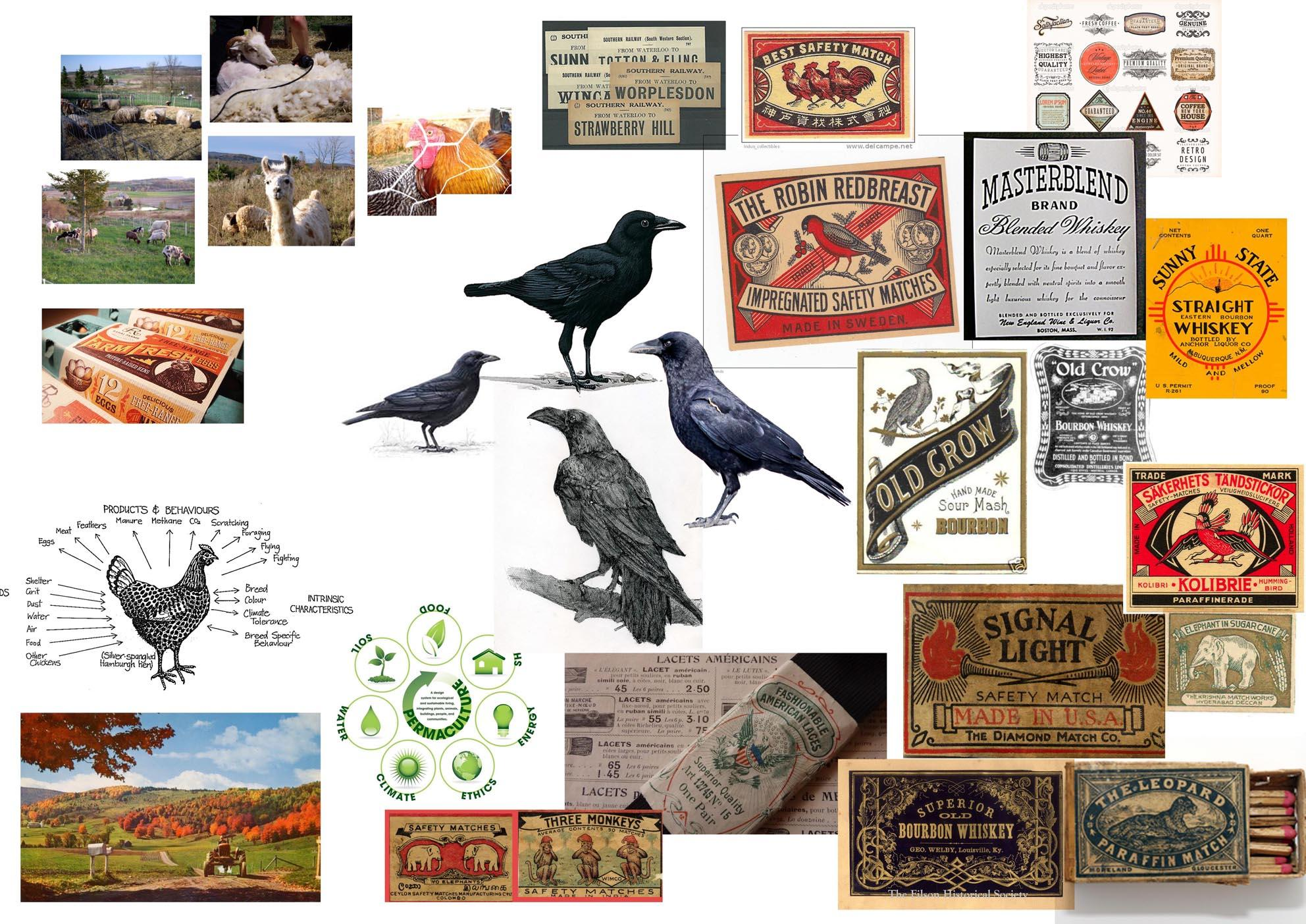 Purple Crow Permaculture - image 1 - student project