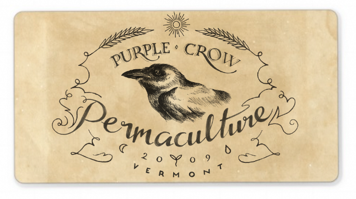 Purple Crow Permaculture - image 13 - student project