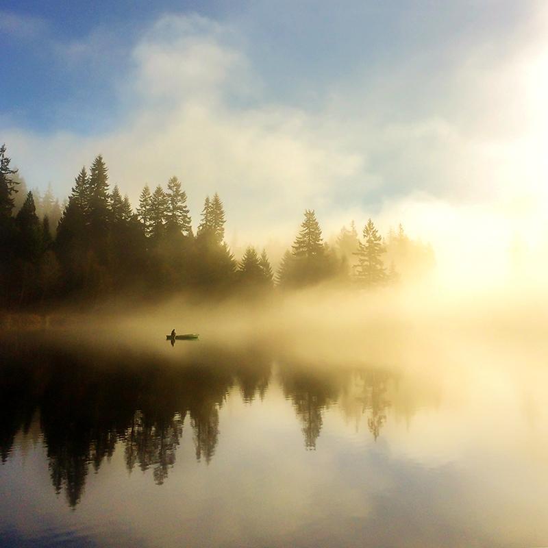 Morning Stillness - image 1 - student project