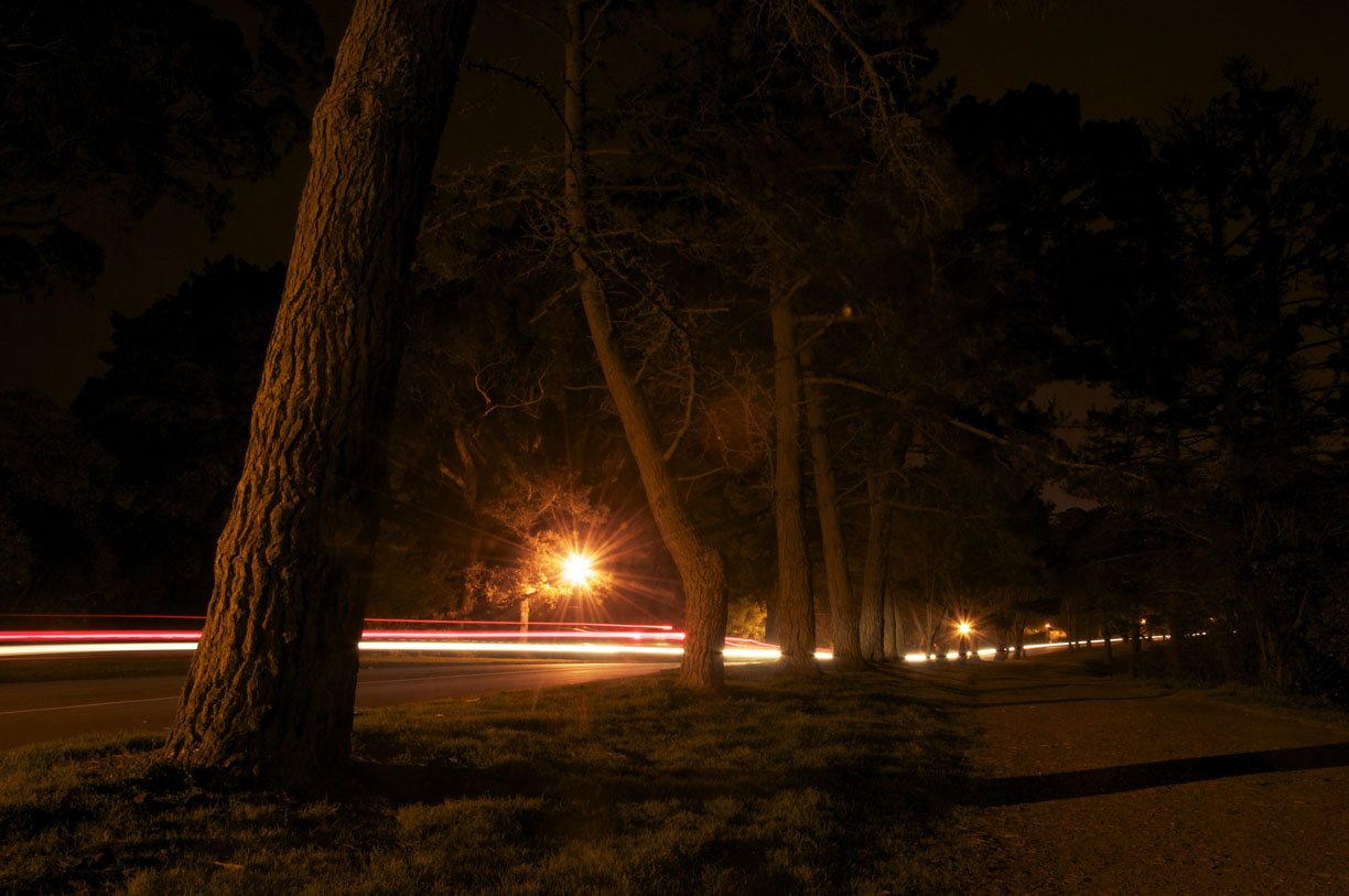 Hoa's Night Photos - image 2 - student project