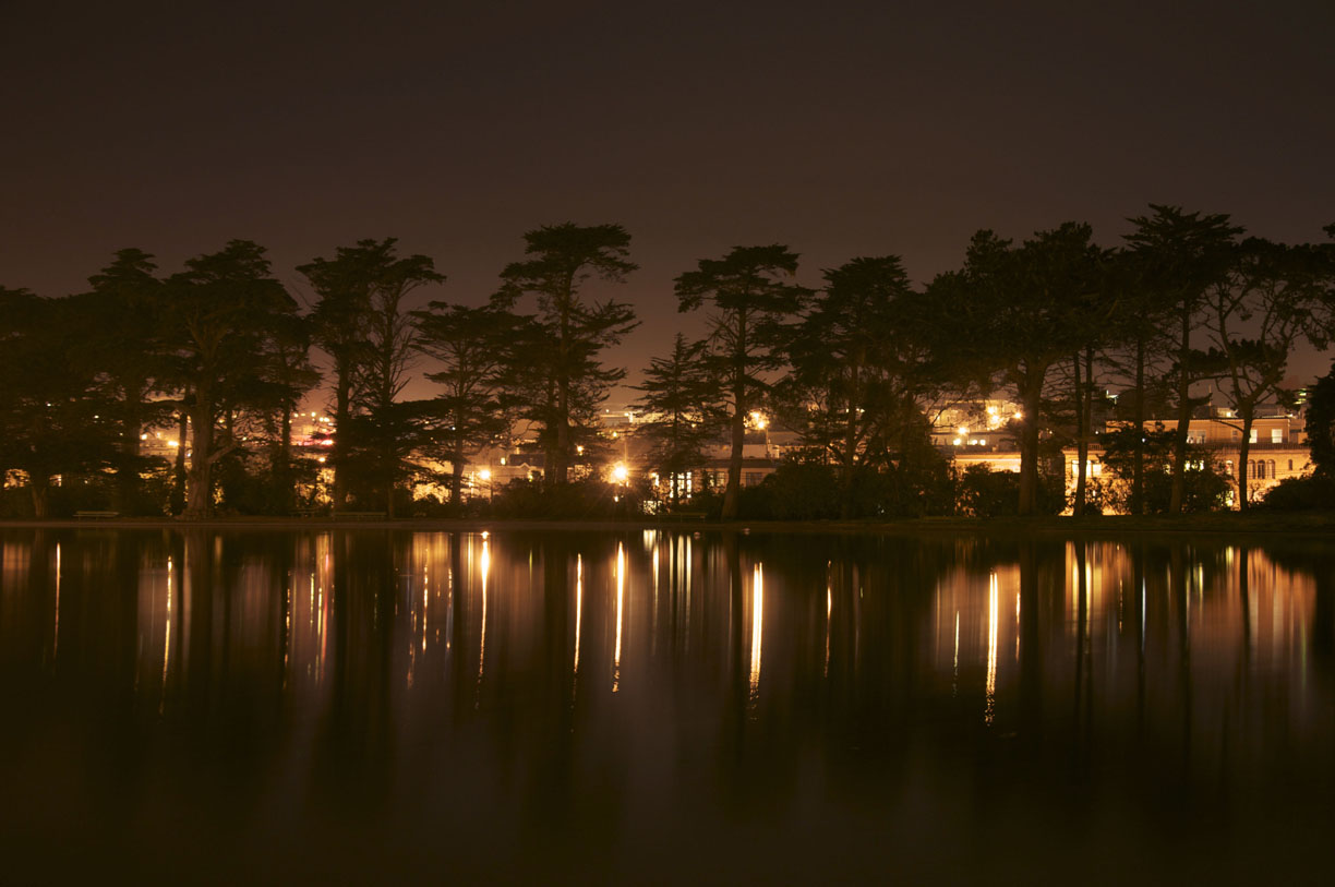 Hoa's Night Photos - image 1 - student project