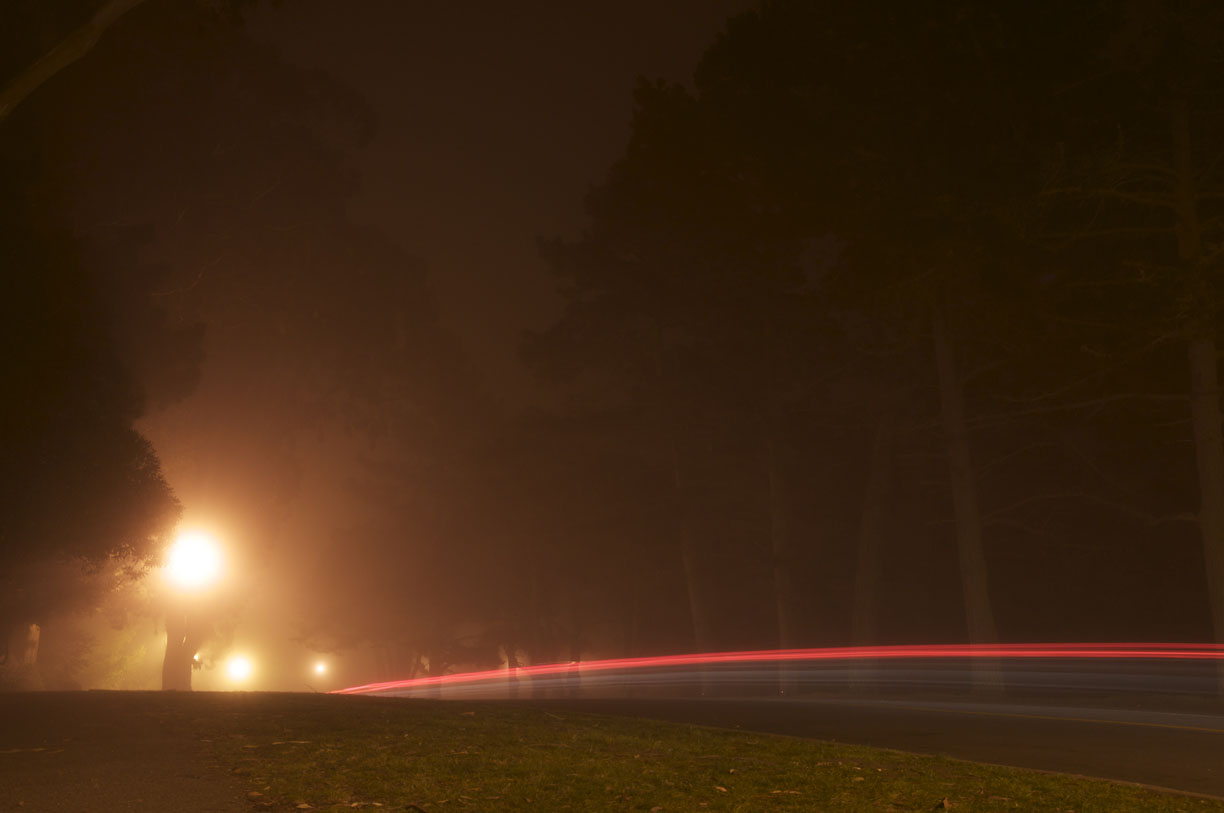 Hoa's Night Photos - image 3 - student project