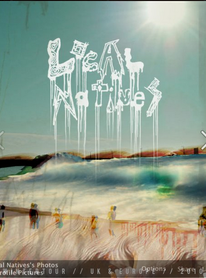 Local Natives - image 8 - student project