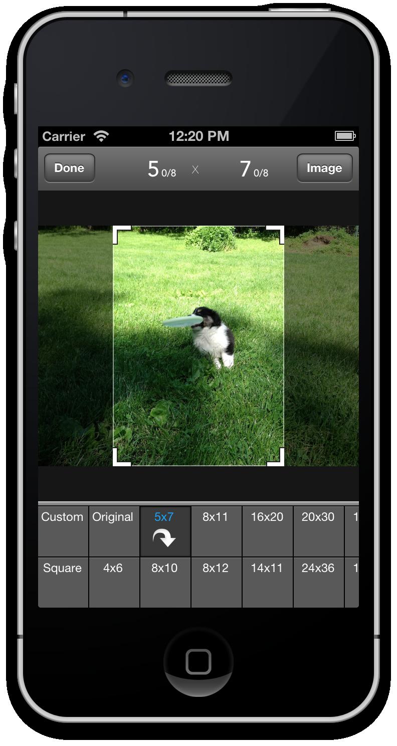 Mat Border Calculator - Making Framing Easy - image 2 - student project