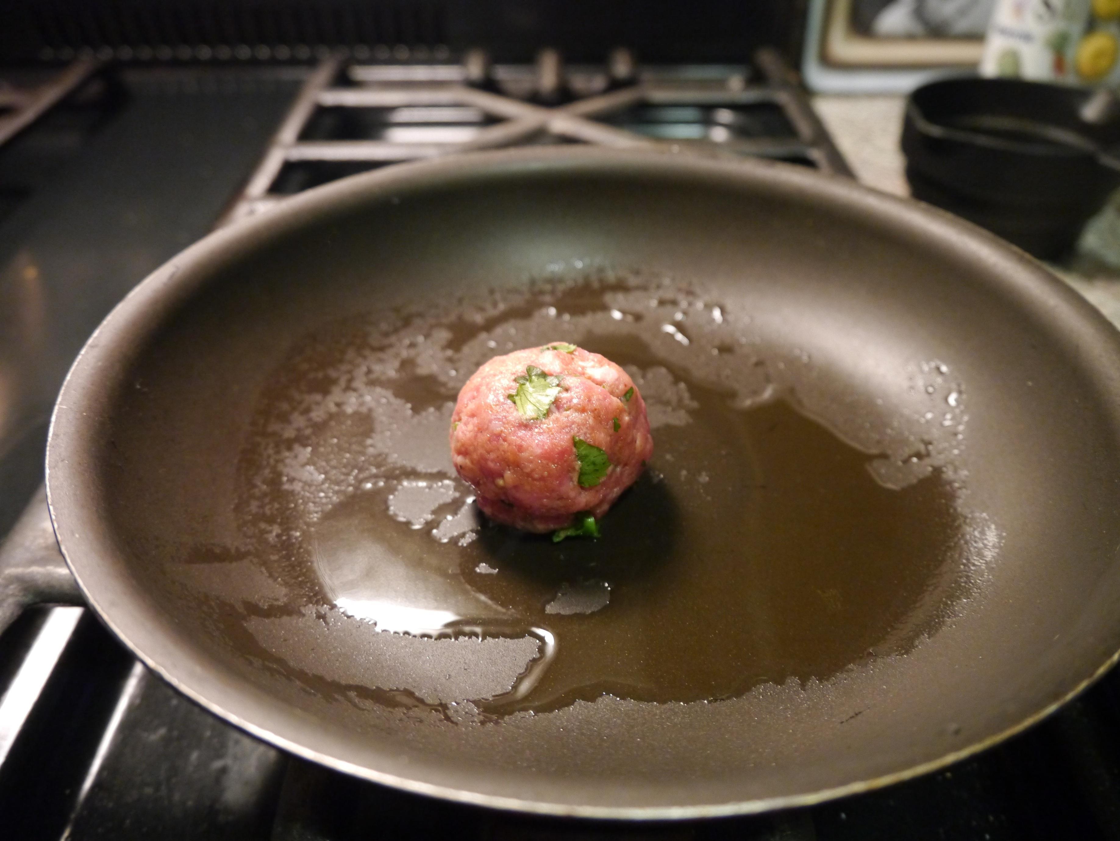 Tandoori Lamb Balls - image 2 - student project