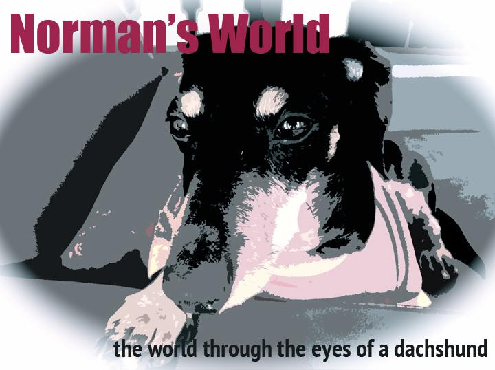 Norman's World - image 3 - student project