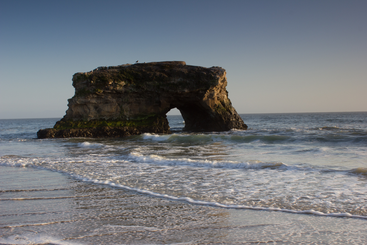 Natural Bridges, Santa Cruz, California. - image 1 - student project