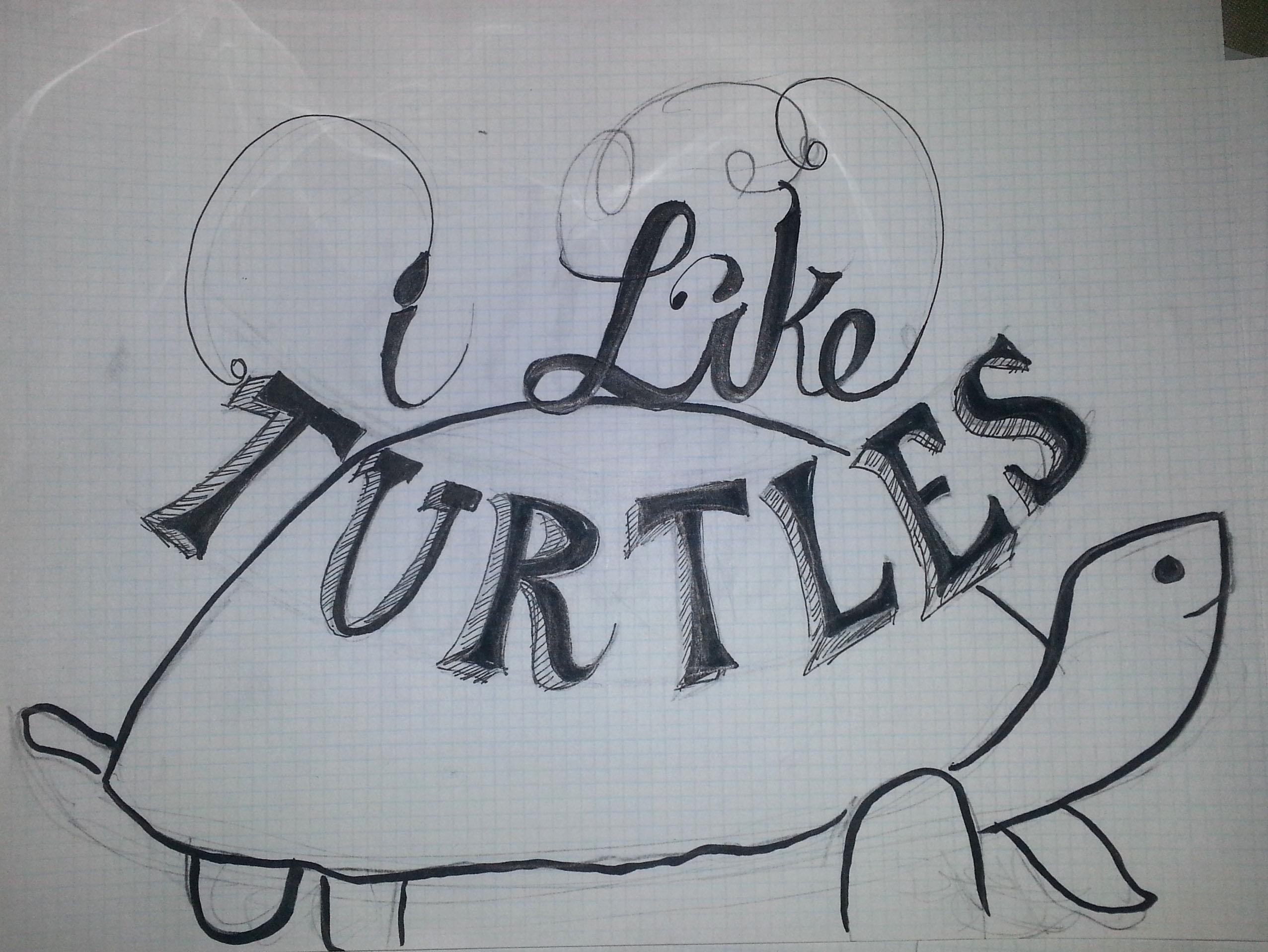 I like turtles - image 3 - student project