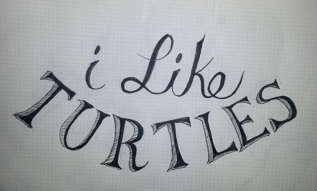 I like turtles - image 1 - student project