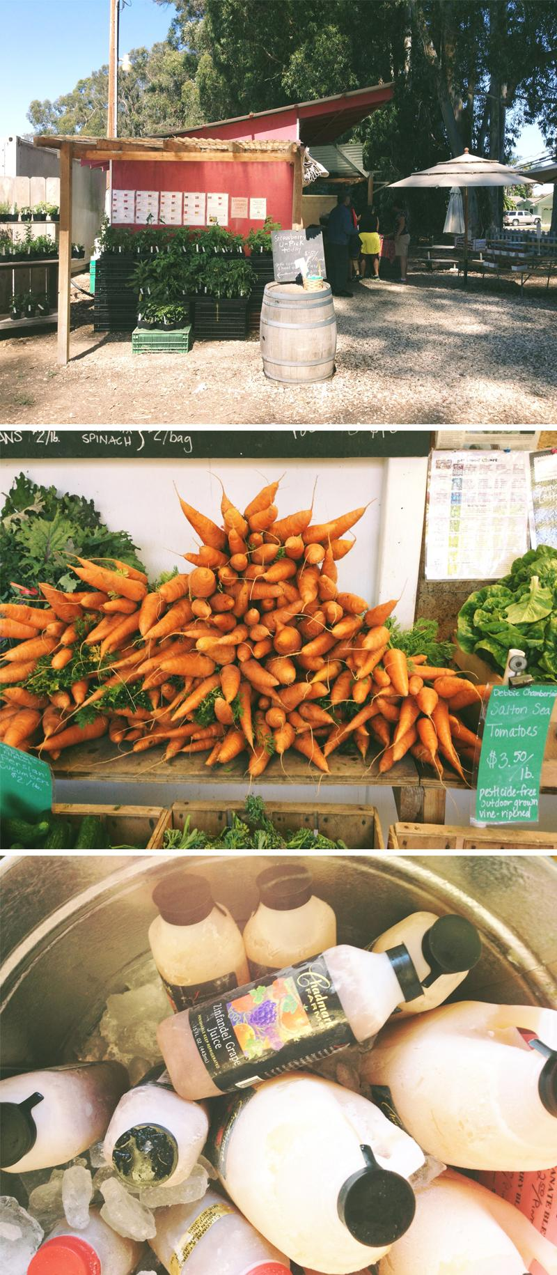 Chadmark Farms - image 1 - student project
