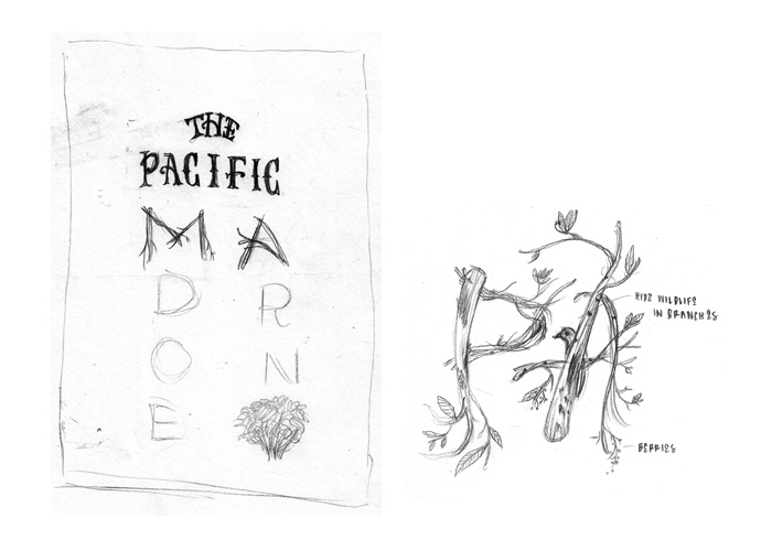 The Pacific Madrone - image 2 - student project