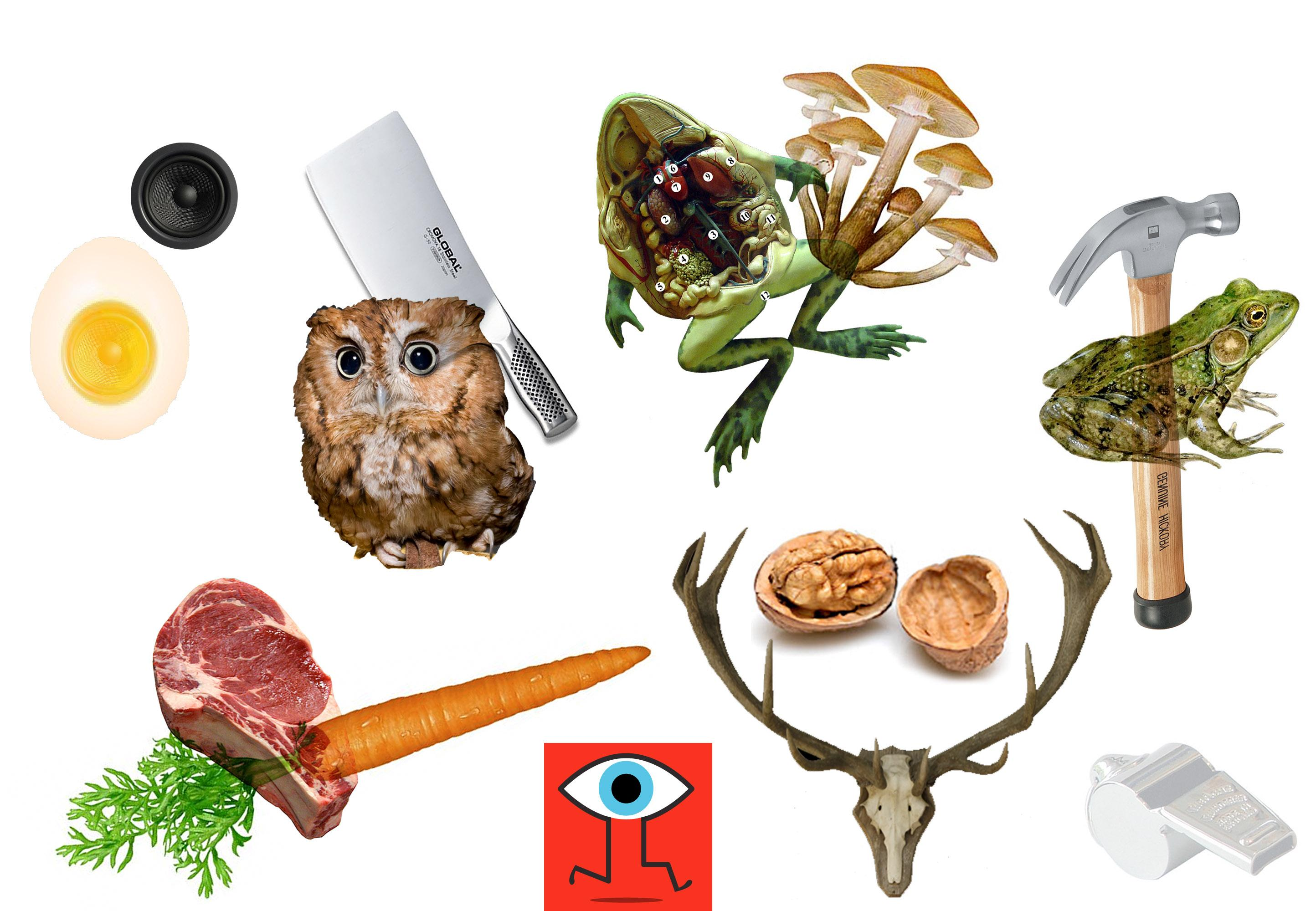Meat eating vegetables - image 4 - student project