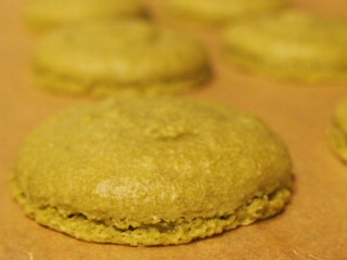 Disastrous my first macarons :( - image 4 - student project