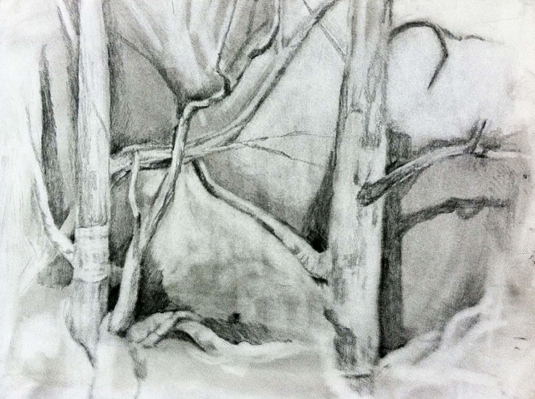 Silent Forest - image 4 - student project