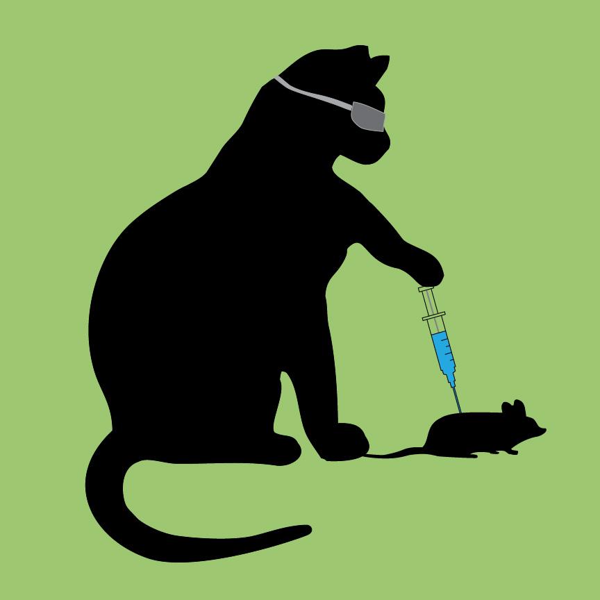 Cat Scientist - image 4 - student project