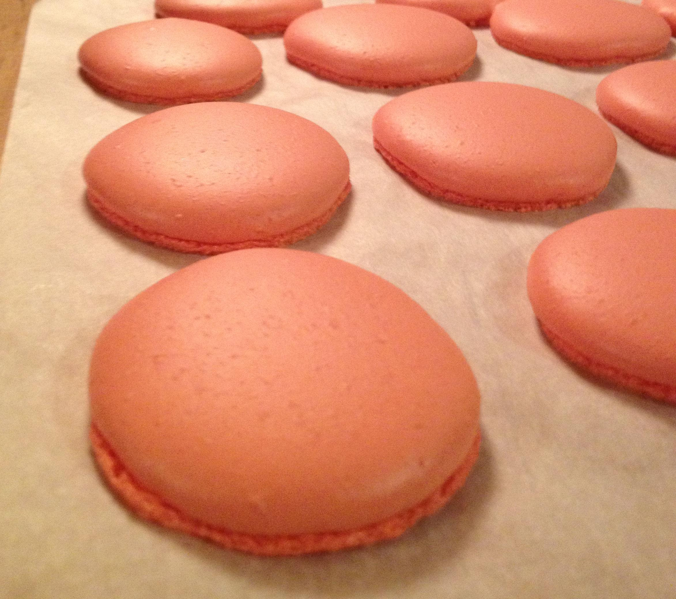 Macarons :) - image 3 - student project