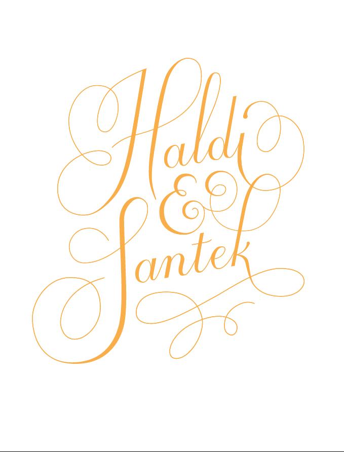 Haldi & Santek - image 3 - student project