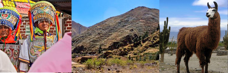 Monsier Periné's Andean Tour - image 6 - student project