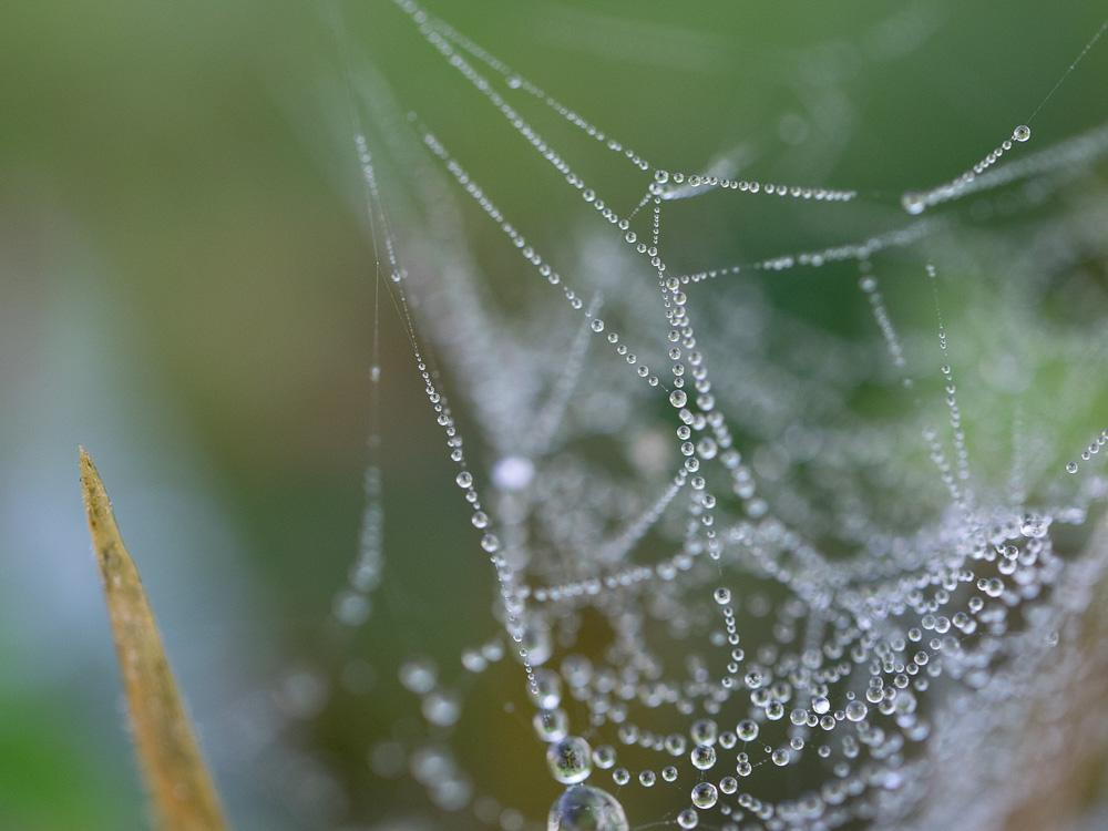 Droplets - image 6 - student project
