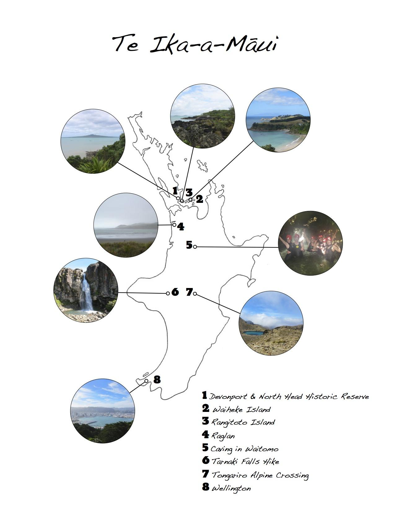 Road Trip Guide to New Zealand - image 5 - student project