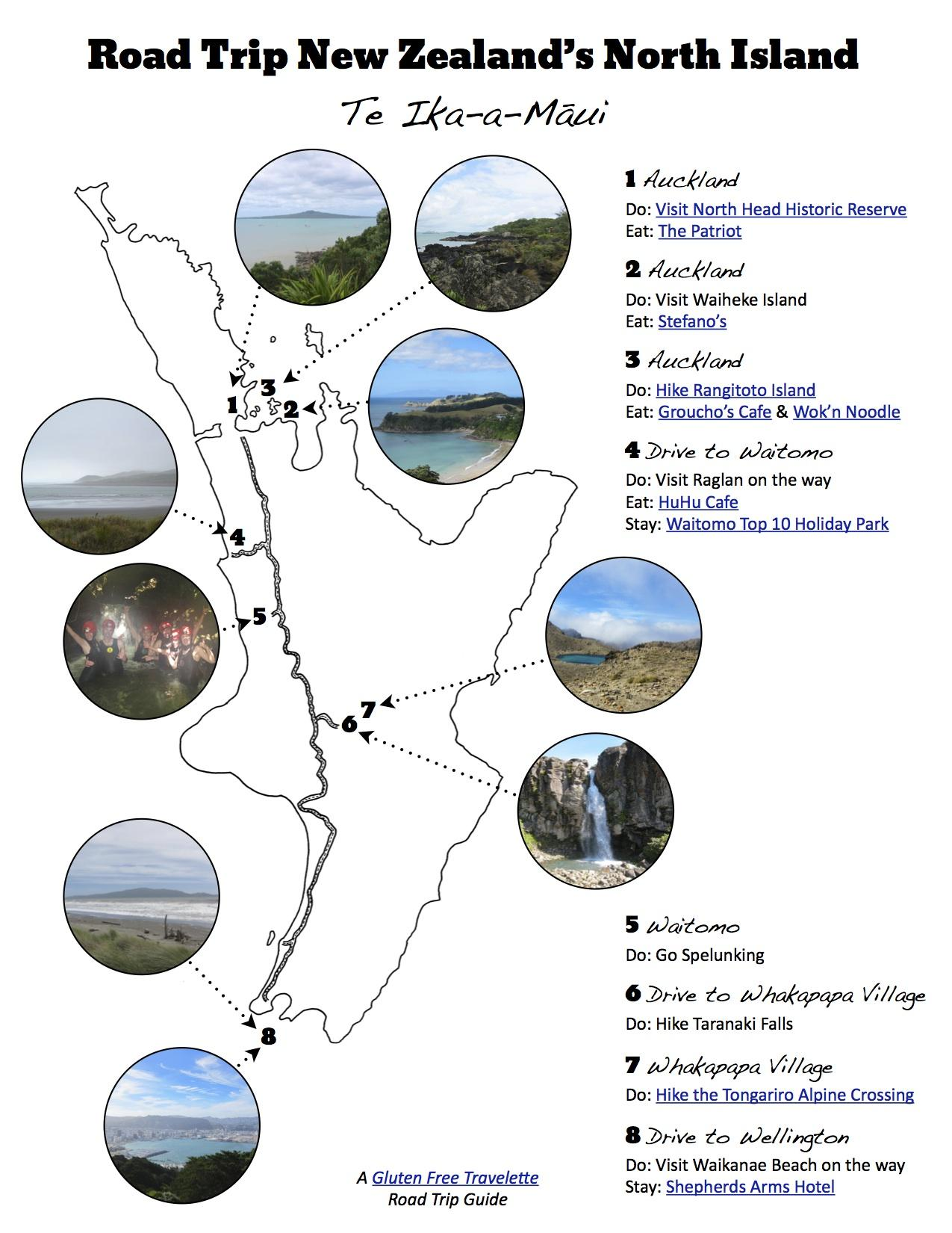 Road Trip Guide to New Zealand - image 6 - student project