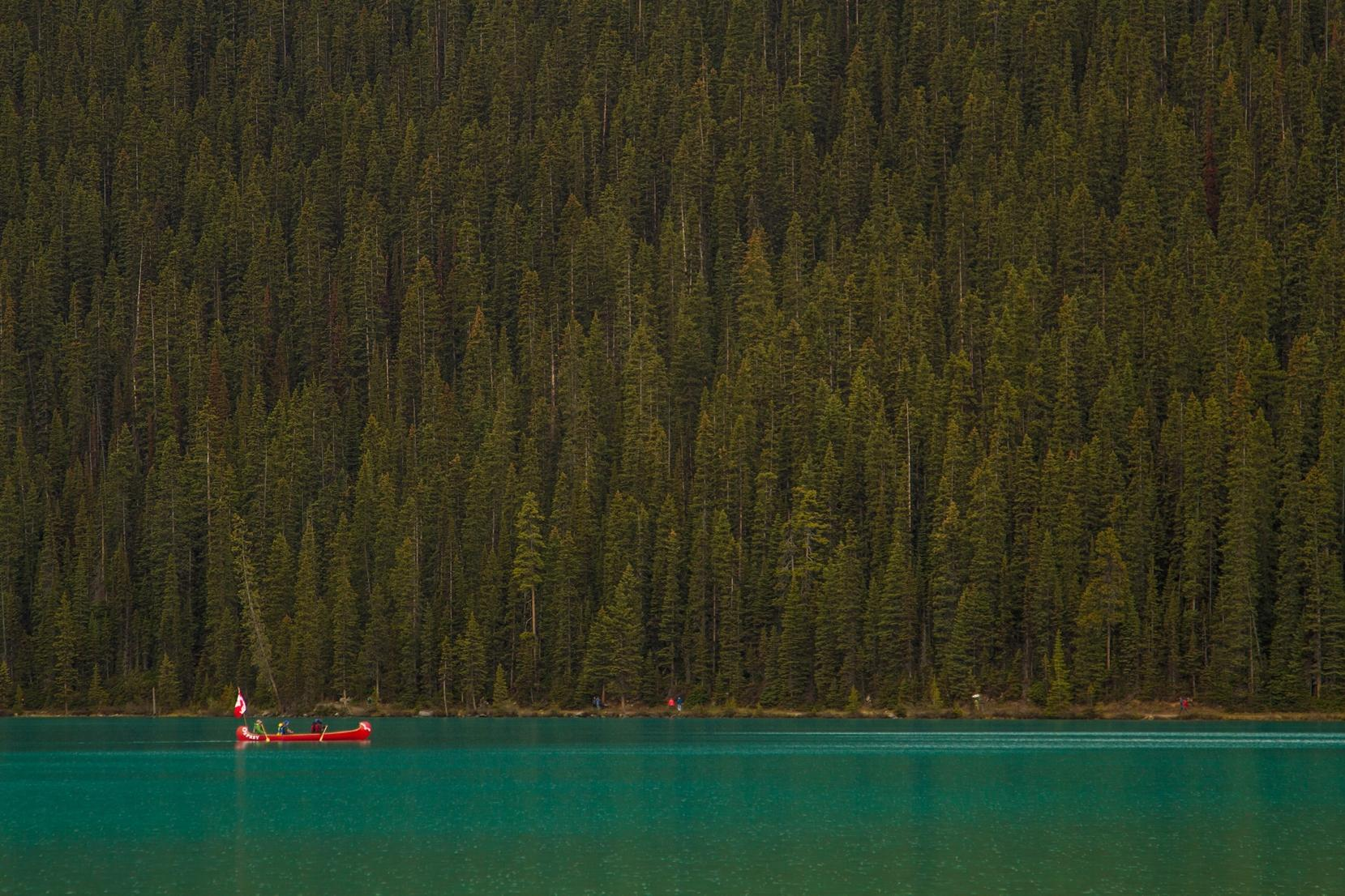 A hour in the Canadian Rockies - image 1 - student project