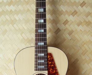 Custom inlay