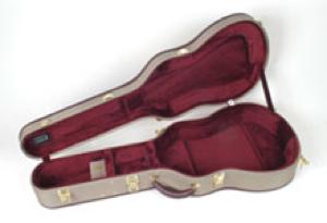 Ameritage guitar case