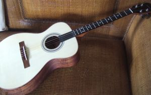 hawaiian custom ukulele