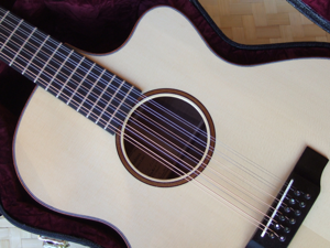 hawaiian guitar, 12 string