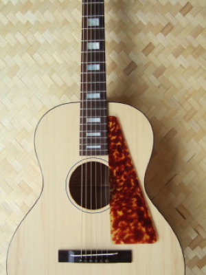 hawaiian custom guitar, deluxe