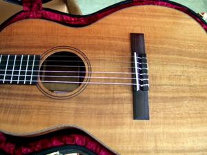 custom guitar kakahimodel