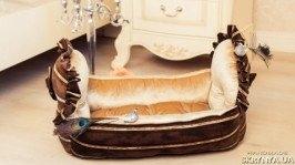 Лежанка для собаки «La Biscotte»