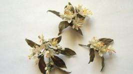 Флердоранж для куклы шелковые цветы