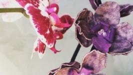 Кожаный ободок, орхидея из кожи
