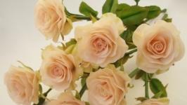 Букет роз из полимерной глины.