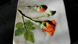 Панно Роза вьющаяся