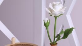 Роза белая в деревянной вазочке
