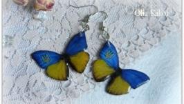 Серьги ′Бабочки′ сине желтые