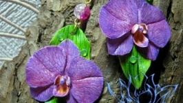 Серьги с орхидеями, холодный фарфор