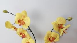 Орхідея із фоамірану