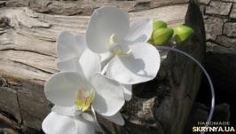 обруч с орхидеями