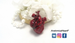 Купить кулон Анатомическое сердце из полимерной глины ′Heart′ 3