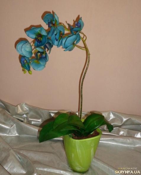 Орхидея девушке в подарок 36